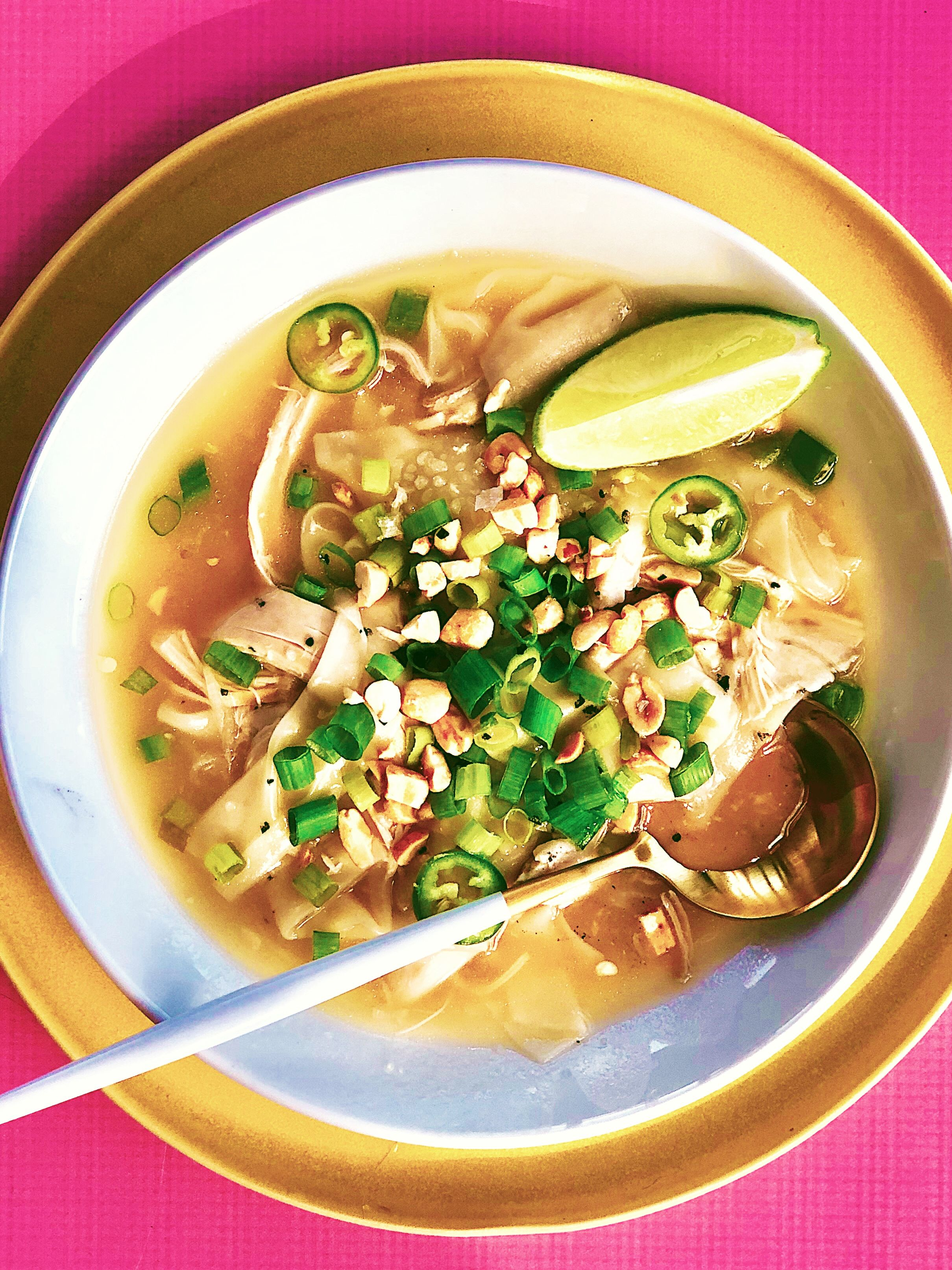 Spicy Wonton Chicken Soup